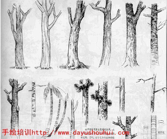 手绘培训--手绘培训教你树的分解技法和技巧/大禹